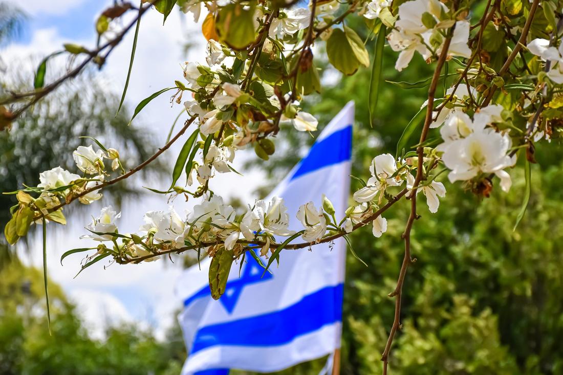 Reisebegleitung Israel